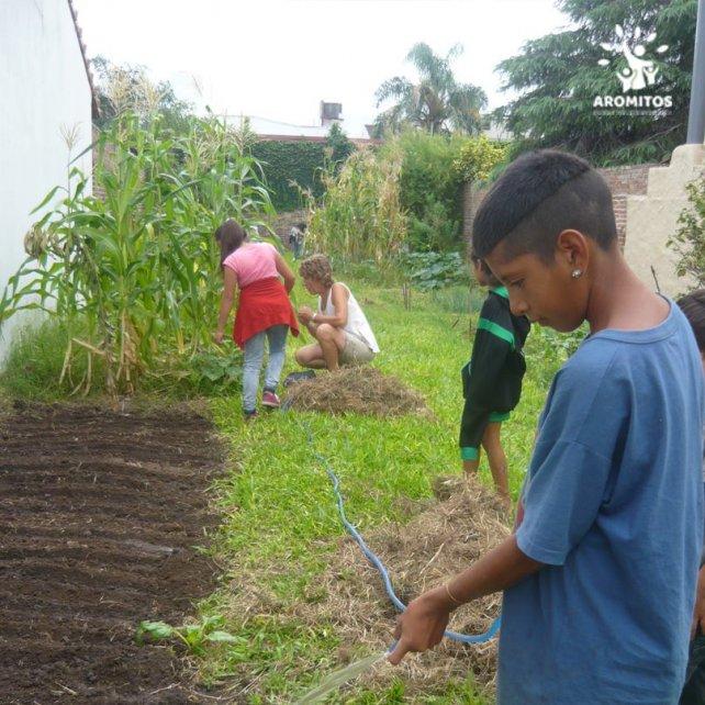 <b>Manos a la tierra.</b> Con la huerta aprenden y producen para el consumo familiar.