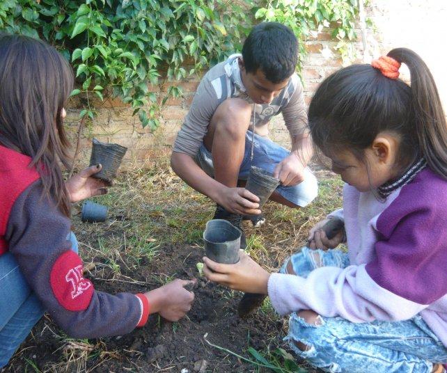 <b>Producción. </b>Aprenden los conocimientos básicos y además producen los plantines.